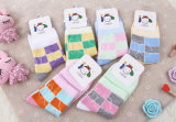 Llanura totalmente informatizada tricotosa para calcetines