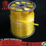 Blanc jaune imperméable à l'eau 100m de DEL 60 pi de DEL de lumière de corde pour la décoration de Buliding