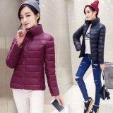 Commerce de gros Simple Fashion femmes Cotton-Padded veste légère du mode enduire