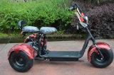 세발자전거의 최신 판매 노련한 제조자