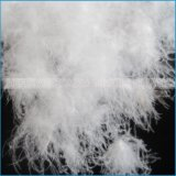 Roupa de cama Inverno Down Jacket Material de enchimento White Duck Down Goose Down
