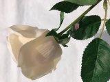 결혼식 호텔 결혼식 훈장을%s 가짜 잎이 실제적인 접촉에 의하여 실크 인공적인 로즈 꽃이 핀다