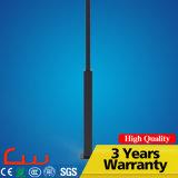 Lâmpada de rua solar do diodo emissor de luz de China 30W 60W 80W do fabricante