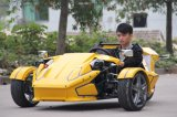 motorino di 300cc Trike con Windshiled