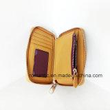 Портмоне выдвиженческих женщин бумажника повелительницы PU кожаный (NMDK-040804)