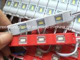 Module d'éclairage vert à LED