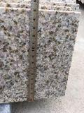 Совершенно черные строительный материал гранита, плитка гранита и верхняя часть тщеты гранита
