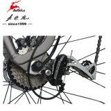 MTB 안장 250W 무브러시 모터 36V 전기 먼지 자전거 (JSL037G)