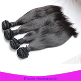 Gerades mongolisches Jungfrau-Strahlen-schwarzes Haar