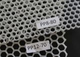 Poids léger de la rigidité force PP feuille alvéolaire