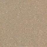 Tegels 60*60cm van het Porselein van het Lichaam van het zout en van de Peper Volledige