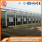 중국 농업 강철 구조물 유리 온실