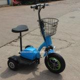500W 3 바퀴 허브 모터 전기 기관자전차 기동성 E 스쿠터