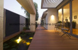 Les ventes en Europe marché chaud Bi-Color WPC Decking