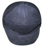 Chapeau d'hiver (WH004)
