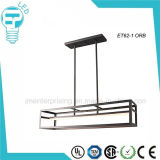 Lampe légère pendante en acier de plafond de DEL