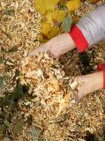 Déchiqueteuse à déchets de bois nouvelle conception 9HP avec certificat Ce