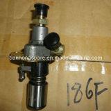 De Motor van de Pomp van de brandstofinjectie 186f