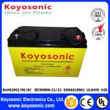 De diepe AGM van de Batterij van de Batterij van de Cyclus 12V Navulbare Diepe Batterij van de Cyclus met de Garantie van 5 jaar