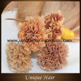 Capelli umani 100% di Remy di estensioni dei capelli della cheratina dell'Italia