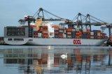 Serviço de transporte do recipiente de Oocl de Shenzhen a Budapest