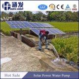 Großhandelschina-Geschäftsbewässerung-Solarwasser-Pumpen-System
