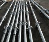 Metal Scafolding All-Round Ringlock Sistema para la construcción Fabricante de Shandong
