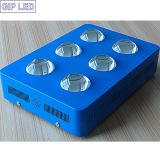 756W personalizzato COB LED Grow Light per Hydroponics Growing System
