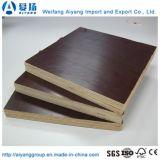 18мм Толщина пленки коричневого цвета, с которыми сталкиваются фанера используется для строительства