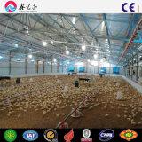 Casa de frango com material de aço Prefab Galpão de frangos de carne de aves de capoeira