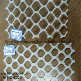Rete di plastica della rete fissa, rete di sacchetto dell'ostrica