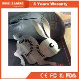 machine de découpage de laser de fibre de plaque d'acier doux de 1000W 2000W pour de plaque métallique