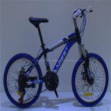 Chinesischer Kohlenstoff gestaltet preiswertes Gebirgsfahrrad des Fahrrad-ReitenMTB Bycycle