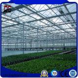 Nouvelle condition photovoltaïque serres en verre multi Span Serre Solaire agricole