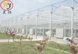 Интеллектуальная стекла выбросов парниковых газов в сад на полдня