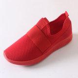 Le nuove calzature di stile bollate calzano i pattini atletici di sport della maglia di modo