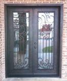 Fantastisches Entwurfs-Quadrat-Oberseite Wrougt Eisen-Außentür