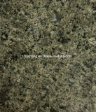 FlooringのためのChengde Green Granite Floor Tile