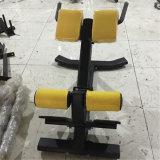 体操の適性装置の十字棒ローマの椅子(背部拡張) Xf32