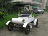 熱い販売電気型車優雅なモデル8乗客