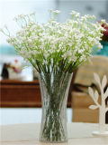 заводская цена очистить стекло для проведения свадеб ваза/Flower ваза/Flower Pot/ (JINBO. 12)