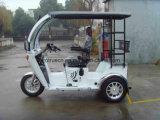 2명의 사람, 3개의 바퀴 기관자전차 (DTR-12B)를 위한 70/110cc 전송자 세발자전거