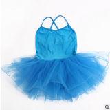 多彩なバレエのダンスの服のスカートのチュチュ