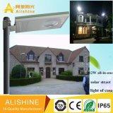De zonne LEIDENE Fabrikant van de Verlichting met Zonne LEIDENE van Ce RoHS IP 65 Straatlantaarn