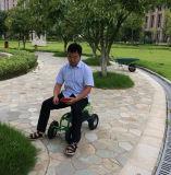Sede di giardino registrabile con il pneumatico