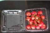Casella di plastica della radura ecologica pp di salute per frutta (imballaggio per alimenti)