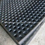 Lo strato perforato della rete metallica dell'acciaio inossidabile/ha perforato la lamina di metallo