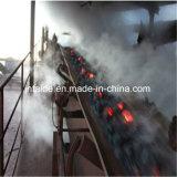 [إب] نوع خيش فولاذ حبل استخراج فحم حرارة - [كنفور بلت] مقاومة مطّاطة