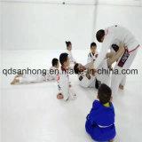 De Mat van het Schuim van Cheerleading van het Tapijt van het Broodje van Flexi/de Mat van de Gymnastiek