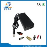 5s 21V 1A de Li-IonenLader van de Batterij met FCC RoHS van Ce